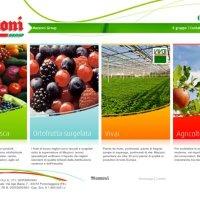 Frutta surgelata biologica