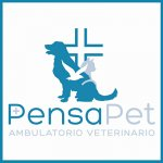 pensapet-ambulatorio-veterinario
